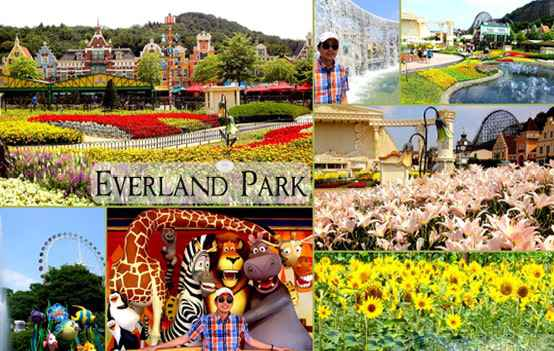 Du Lịch Hà Nội – Seoul – Đảo Nami – Everland 4 Ngày 3 Đêm