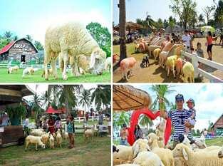 Du Lịch Thái Lan 5 ngày 4 đêm Buffet 86 Tầng – Cưỡi Voi – Nông Trại Cừu – 4 Sao Mới Đặc Sắc