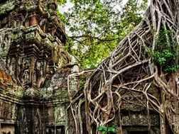 Du lịch Campuchia – Phnompenh – Siêm Riệp – Giá tốt từ Hà Nội