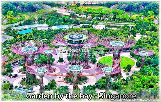 Du lịch Singapore - Garden By The Bay