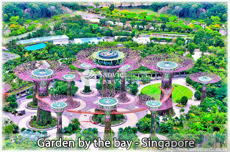 Du lịch Singapore Garden By The Bay