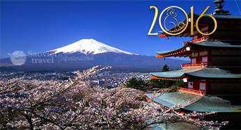 Du lịch Nhật Bản 6 Ngày Giá tốt từ Hà Nội