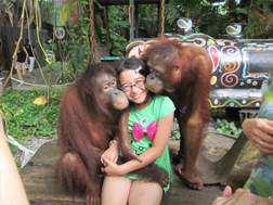 Du lịch Thái Lan 5 ngày 4 đêm – Vườn thú Safari world – Buffet 86 tầng – giá tốt từ TP.HCM