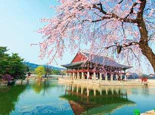 Tour Du Lịch Hàn Quốc – Jeju – Seoul – Everland 6 Ngày 5 Đêm
