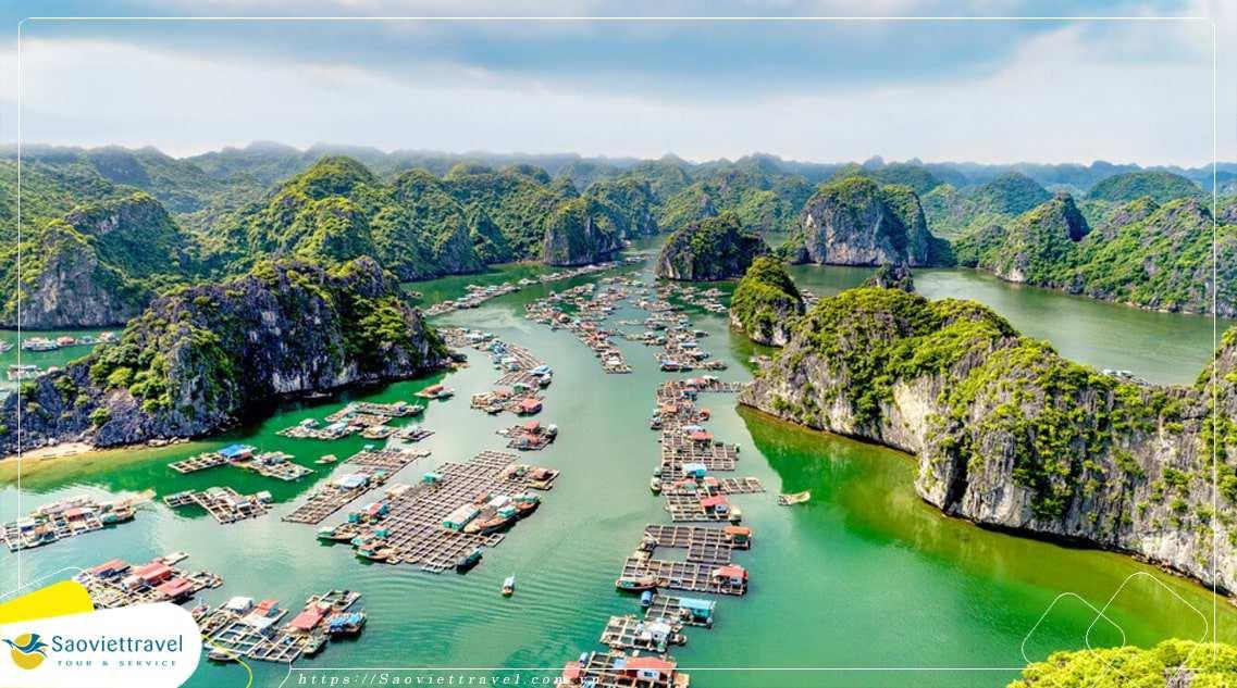 Du lịch Hà Nội – Hạ Long – Đảo Khỉ – Cát Bà 4 Ngày 3 Đêm giá ưu đãi lớn 2018