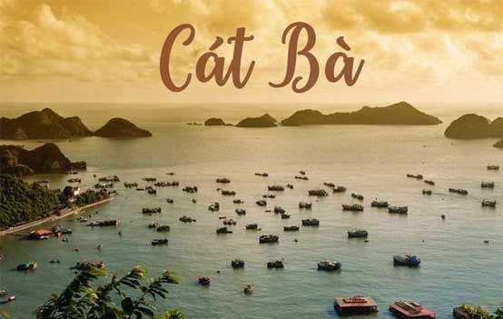 Du lịch Hạ Long – Cát Bà  – Đảo Khỉ 3 Ngày 2 Đêm giá cực tốt