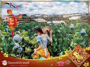 Du lịch Tết Tân Sửu 2021 – Tour Đà Lạt 3 ngày 2 đêm giá tốt từ Sài Gòn