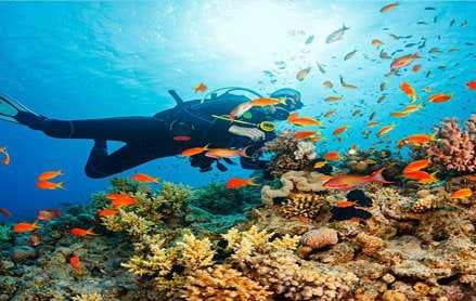 Du lịch Thái Lan – Bangkok – Pattaya 5 ngày giá tốt 2019 – bay Vietnam airlines