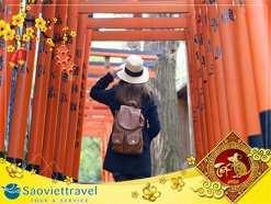 Du lịch Nhật Bản Tết Âm lịch 6 ngày 5 đêm từ Sài Gòn giá tốt 2020
