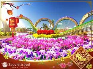 Tour Đà Nẵng dịp tết âm lịch 2021 – Hội An – Huế – Động Phong Nha giá tốt  từ TP.HCM