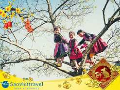 Du lịch Miền Bắc Tết Âm Lịch 2020 – Hà Nội – Hạ Long – Sapa – Ninh Bình 5 ngày từ Sài Gòn
