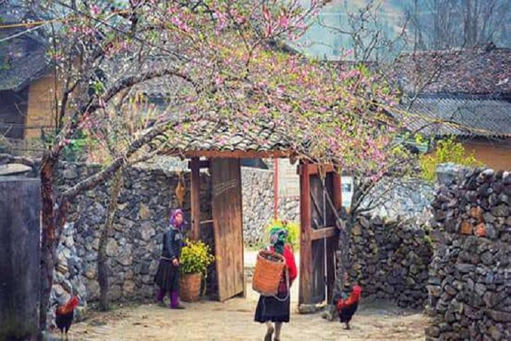 Tour Hà Giang 2 ngày 3 đêm – Cao Nguyên Đá – Cột Cờ Lũng Cú – Mèo Vạc từ Hà Nội