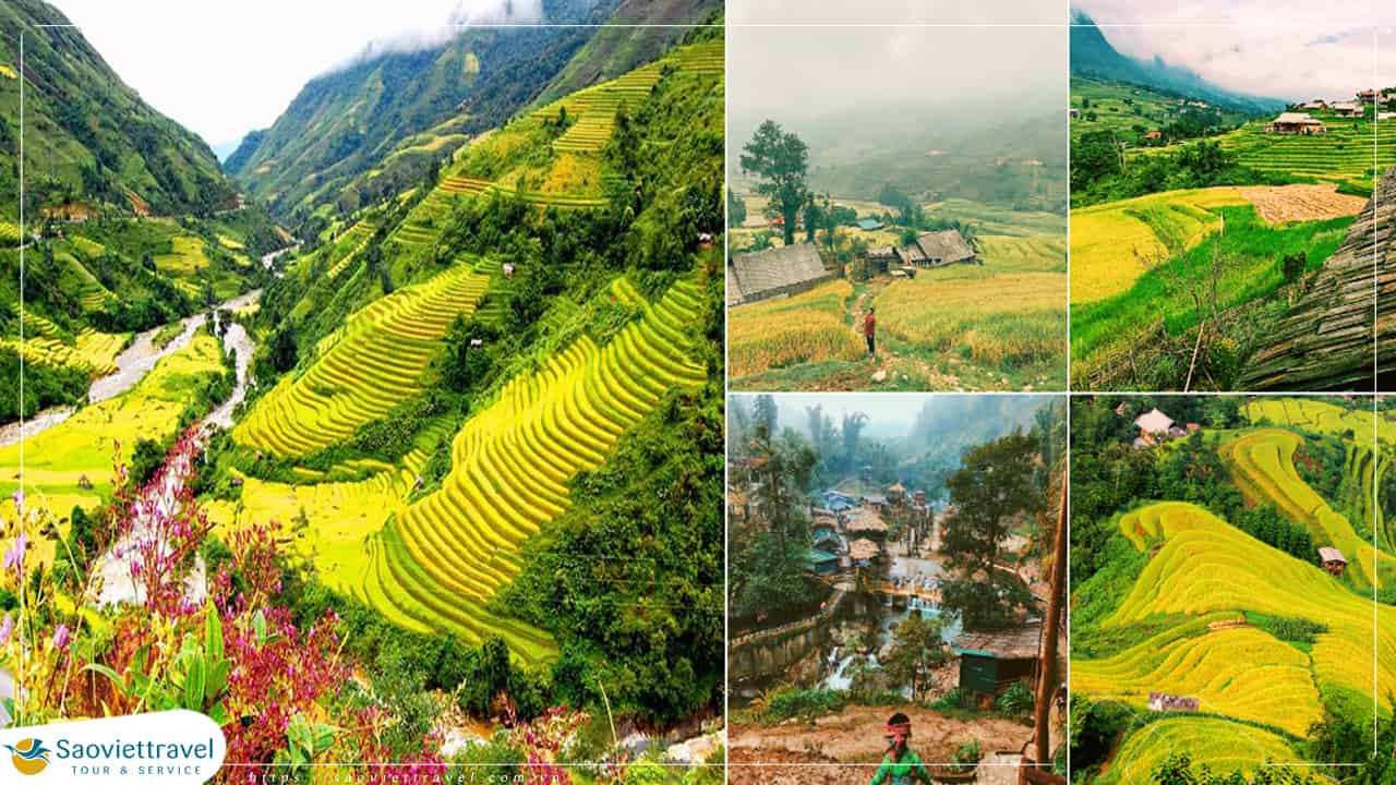 Tour Tây Bắc 4 ngày 3 đêm – Mộc Châu – Sơn La – Điện Biên – Lai Châu – Sapa từ Hà Nội