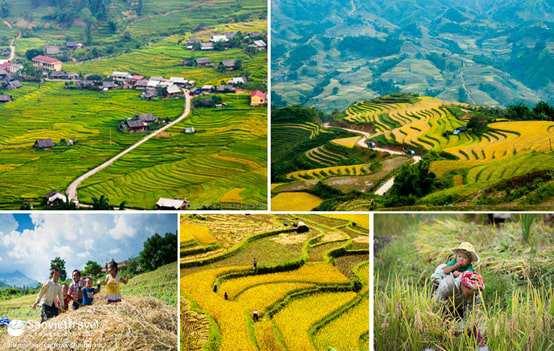 Du lịch Tây Bắc – Mai Châu – Mộc Châu – Điện Biên – Sơn La – Lai Châu – Sapa 4N3Đ từ Hà Nội