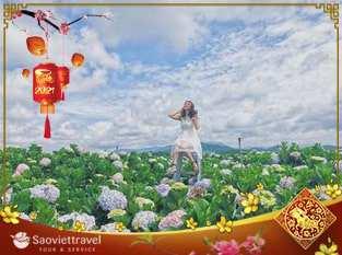 Du lịch Tết Nguyên Đán 2021 – Đà Lạt 3 ngày 2 đêm khởi hành từ Hà Nội
