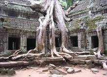 Den Angkor Wat Campuchia